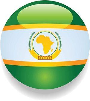 Quel rôle l'Union Africaine peut-elle jouer dans la gestion des crises humanitaires en Afrique ?