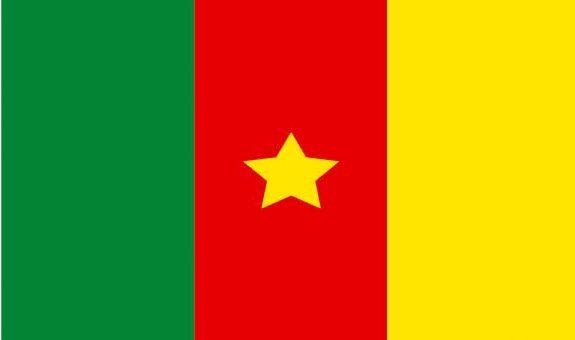 Présidentielle 2018 au Cameroun : la der des ders pour BIYA ?
