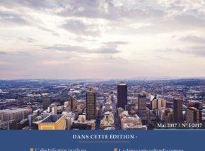 La Revue de L'Afrique des Idées – numero 1