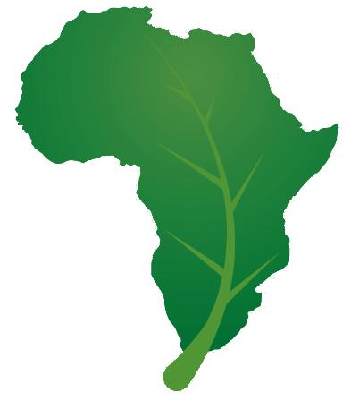 Afrique : L'heure de la conjugaison du développement et de l'écologie